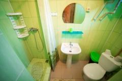 Душевая кабина и туалет